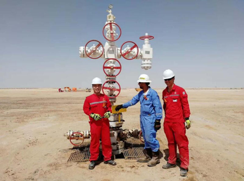 oil and gas surface wellhead